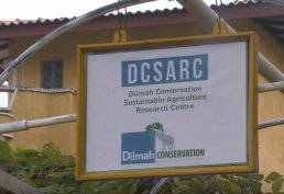 Dilmah Conservation: A Vegetable Garden in a Crop Column