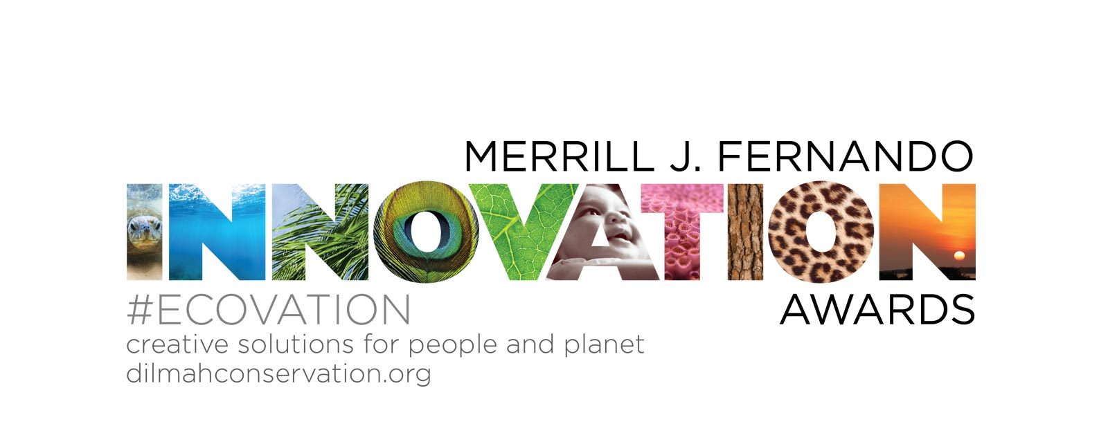 Merrill J Fernando Award for Eco-Innovation