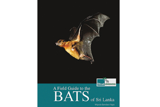 A Field Guide to the Bats of Sri Lanka