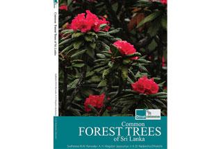 Common Forest Trees of Sri Lanka