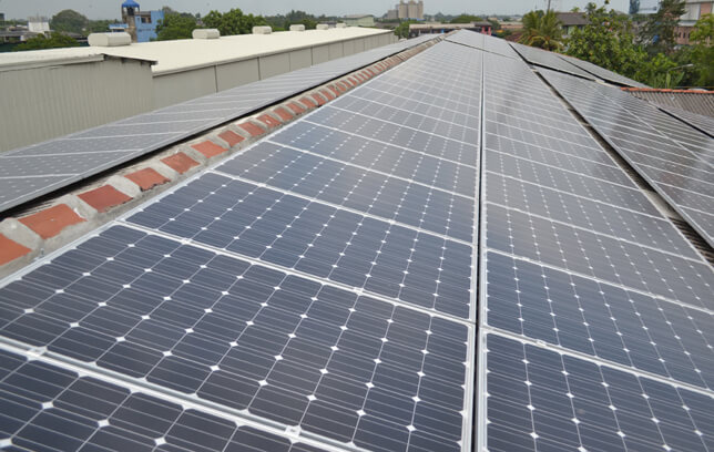 Carbon Neutral Dilmah