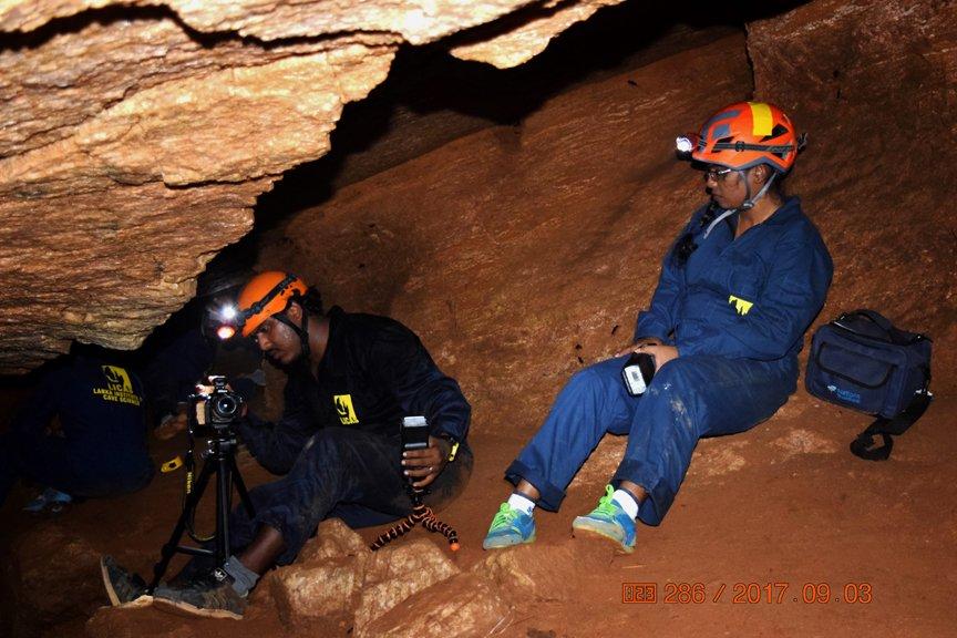 Cave Biodiversity