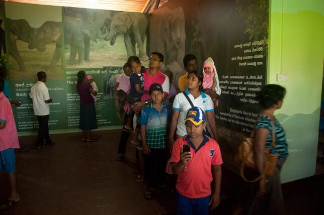 Uda Walawe Wildlife Program