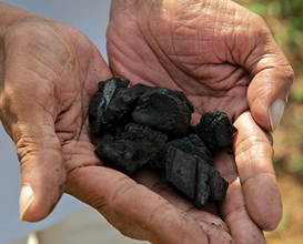 Pieces of Biochar in Hands