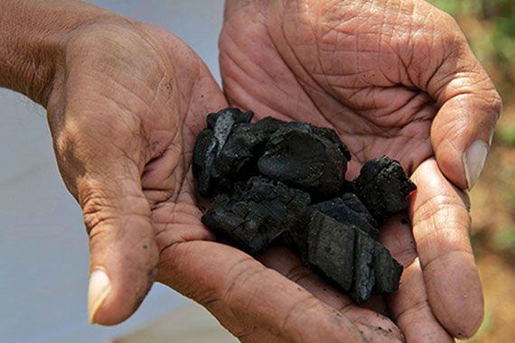 Photograph of Biochar on Hands