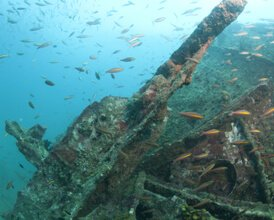 Conservation of Sri Lanka's Marine Heritage