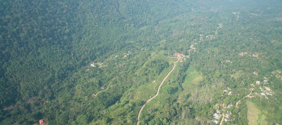 Aerial Photograph of a Tea Estate