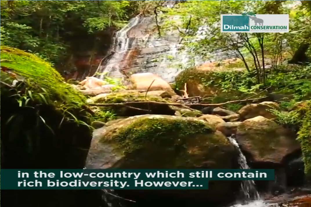 Sri Lanka's Rich Biodiversity
