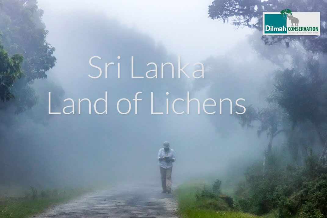 Sri Lanka Land of Lichens