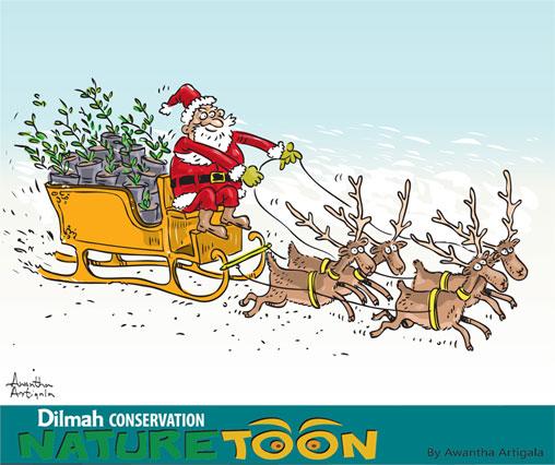 Naturetoon - December