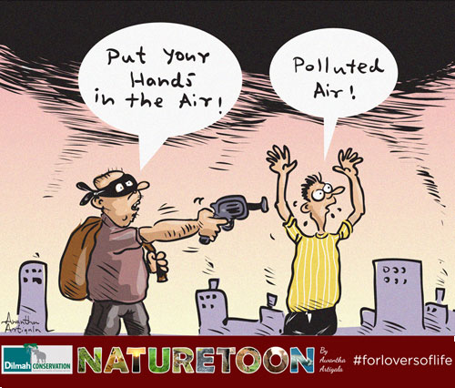 7 million deaths are thought to occur worldwide due to air pollution each year.