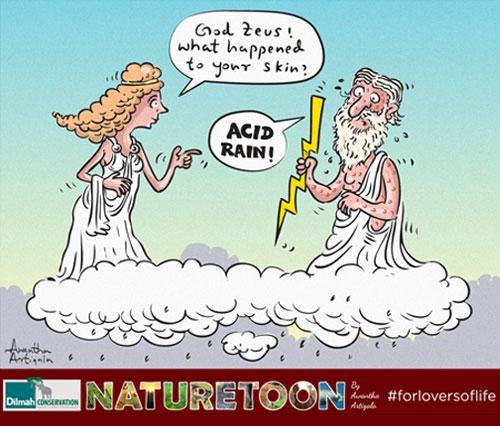 NatureToons | Environment Cartoons | Dilmah Conservation