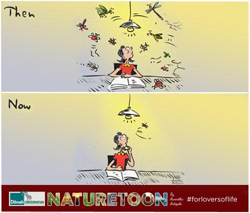 Cartoon Image of Fireflies Extinction