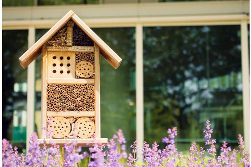 Make a Solitary Bee Hotel