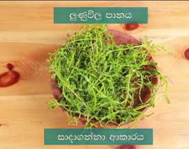 Home Remedies for Constipation (Sinhala)